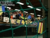 btsv-handball_vs_vfrsalder_a_08-09_055